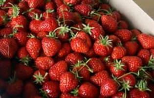 Confiture de fraises - Etape 1