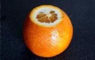 Ecorces d'oranges confites - Etape 2