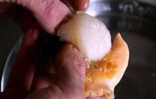 Nettoyer une coquille saint Jacques - Etape 2