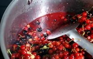 Gelée et sirop de groseilles et cassis - Etape 2