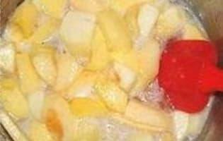 Pâtes de fruits pomme coing - Etape 4