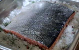 Gravlax de saumon - Etape 6