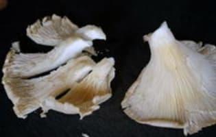 Pleurotes sautés - Etape 2