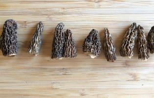 Ris de veau aux morilles - Etape 2