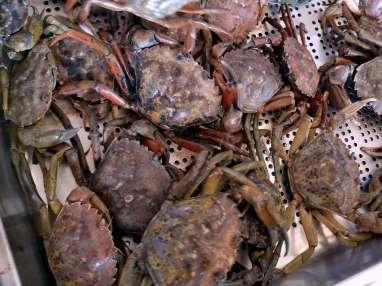bouche au fruit de mer recette