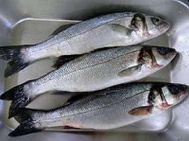 matelote de poissons au vin blanc