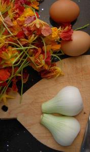 Préparation d'une omelette de fleurs