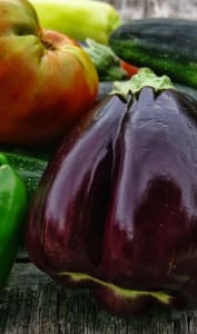 Aubergines, poivrons, tomates et courgettes