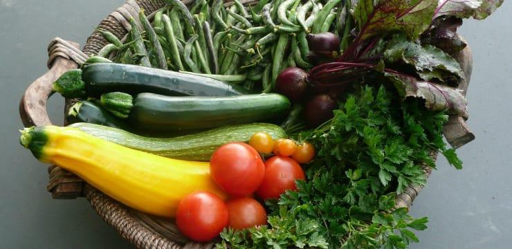 Des recettes de légumes originales ou classiques pour toutes les ...