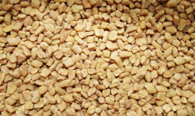 Graines de fenugrec