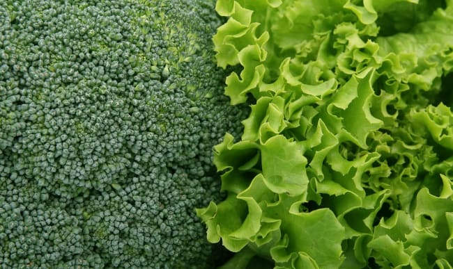 Brocoli et salade
