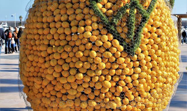 Exposition de citrons de Menton