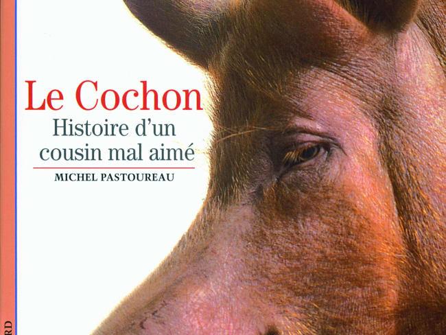 Le cochon - Histoire d'un cousin mal aimé
