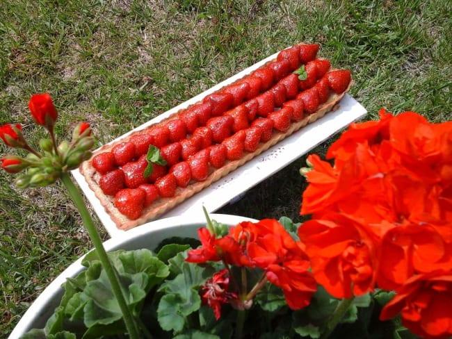Tarte fraises rhubarbe