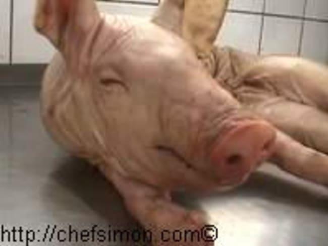 Cochon de lait rôti