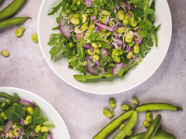 Salade de févettes du pays, roquette, cébettes, radis red meat, cerfeuil, fleurs de ciboulette