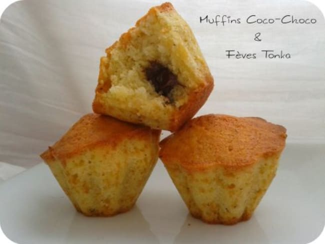 Muffins Coco-Choco Fèves Tonka