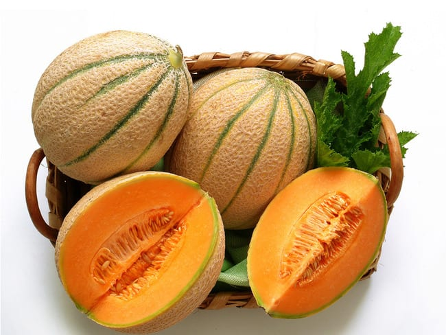 Les melons et pastèques - Histoire, variétés et cuisine