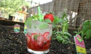 Le mojito à la fraise