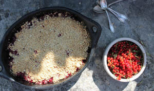 Crumble aux fruits d'été et flocons d'avoine
