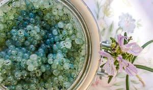 Caviar végétal à la spiruline