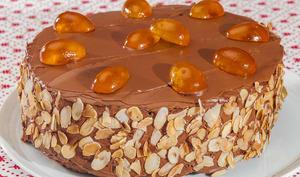 Gâteau au chocolat et à la ricotta