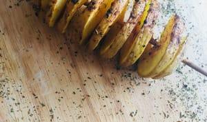 Tornado potatoes ou spirales de pommes de terre