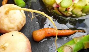 Cuisse de dinde fumée au thym & son jardin delégumes de printemps
