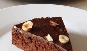 Gâteau au cacao et nappage façon rocher