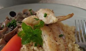 Merlan grillé, champignons à la crème et Quinoa blanc