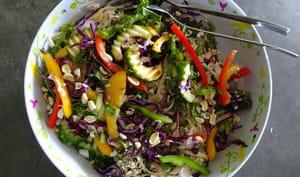 Salade de légumes colorés aux nouilles avec un dressing asiatique de Ree Drummond