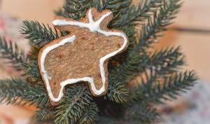 Sablés de Noël sarrasin et agrumes