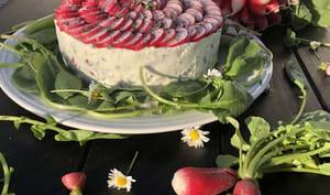 Cheesecake salé aux radis