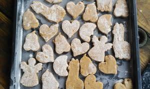 Les Biscuits de la Joie d'Hildegarde de Bingen cuits au four solaire