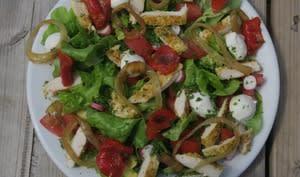 Salade au poulet épicé, légumes crus et grillés, mozzarella