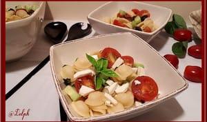 Salade d'orecchiette au basilic, olives, tomates, concombre et feta