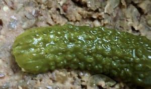 Rillettes végétales aux lentilles vertes