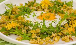 Salade de pois cassés aux œufs