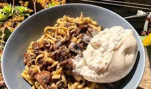 Tagliatelles fraîches, champignons et burrata