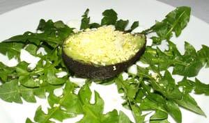 Salade de pissenlit et son avocat au pesto façon mimosa
