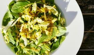 Salade alcalinisante express aux légumes de saison