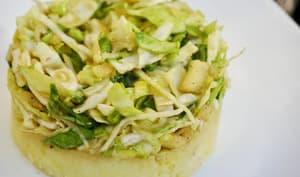 Salade de choux et fenouil alcaline sur purée de pommes de terre