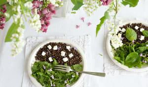 Salade de feuilles de tilleul