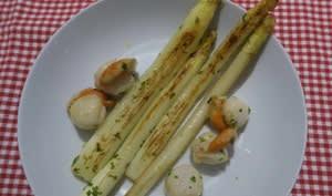 Asperges blanches des Landes et noix de St-Jacques au beurre ail et persil