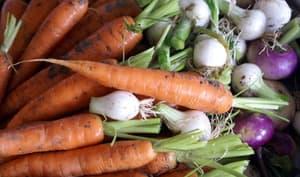 Jardinière de légumes : la préparation des légumes