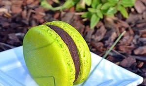 Macarons chocolat noir / verveine