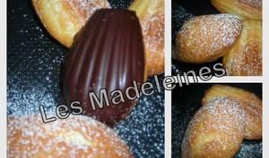 Madeleines vanille citron coque chocolat