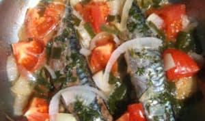 Maquereaux à la poêle aux tomates et oignons nouveaux