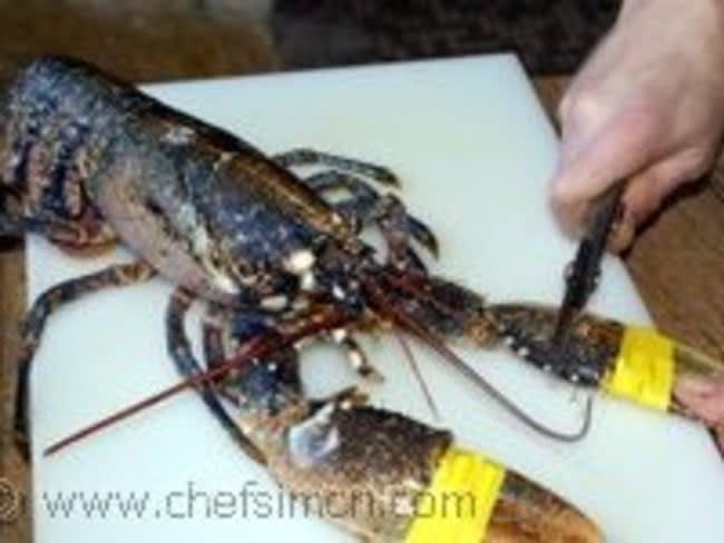 Croquettes de homard