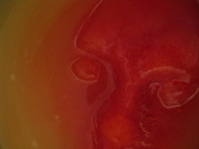Punch rouge au cidre d'Halloween, visage de glace, main glacée